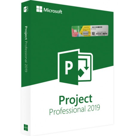 copy of Project 2019 Professional