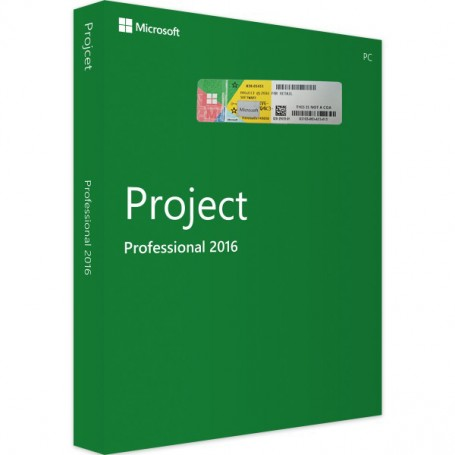 copy of Project 2016 Professional
